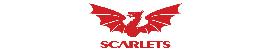 Scarlets Parc Y Scarlets Medicus Training